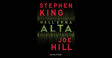 cover libro king in the tall grass